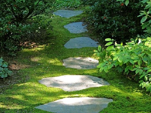 c4119c93157 Градината - С красивата пътека постигате завършен ансамбъл