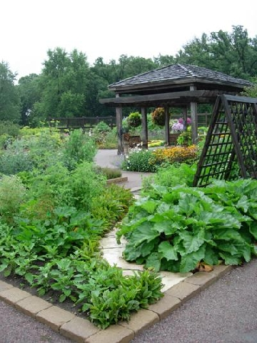Фото садов и огородов своими руками