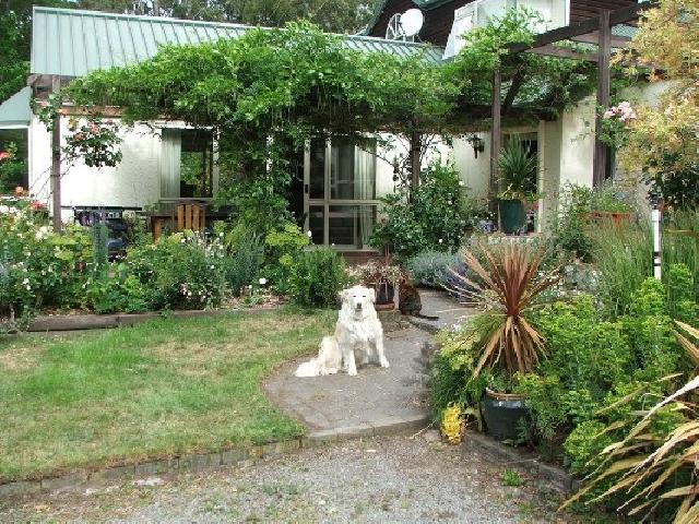 Градината Куче в градината