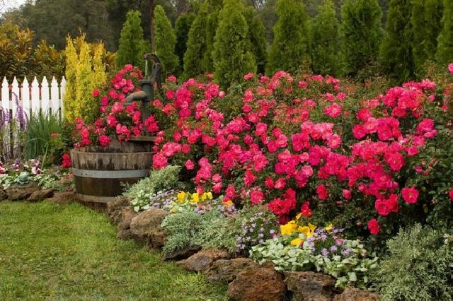 243c200a176 Бордюрите Достатъчно е да заобиколите цветната леха с бордюр или ниска  ограда и тя веднага се превръща в градинка. Бордюрът може да огради цветна  композиция ...