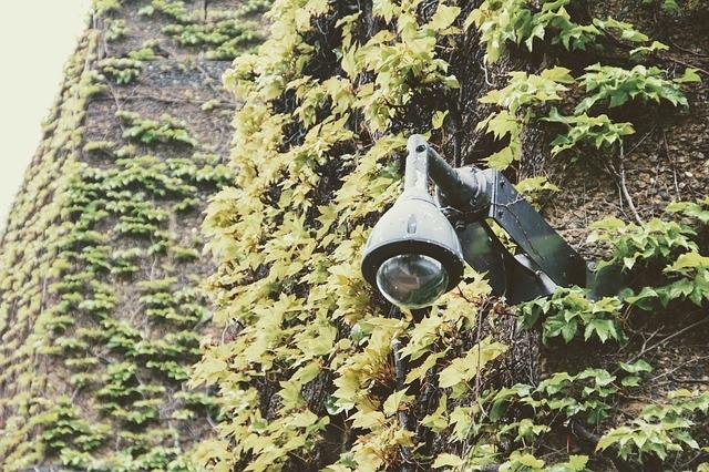 Камера за видеонаблюдение в градината
